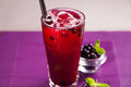 Red currant cold tea Royalty Free Stock Photo