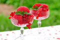 Red currant dessert wine sorbet, copy space for your text Royalty Free Stock Photo
