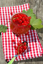 Red currant jam in a glass Stock Photos