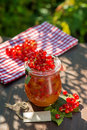 Red currant jam in a glass Stock Photography