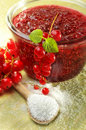 Red currant jame Stock Images