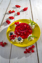Red currant jelly and mint leaves Royalty Free Stock Image
