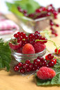 Red currant and raspberry Royalty Free Stock Photography