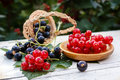 Red currant in a wooden plate and black currant in a basket on a table in the garden Royalty Free Stock Photo