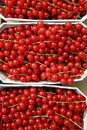 Red currants bunches of at farmer s market Stock Photo