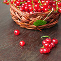 Red currants fresh currant berries in a wicker bowl in the old wooden table Stock Image