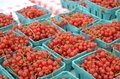 Red currants for sale in the outdoor market Royalty Free Stock Photo