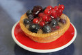 Red Currants Tartlet with red and black berries Stock Image