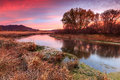 Red dawn morning by a flowing stream in the rural Utah mountains. Royalty Free Stock Photo