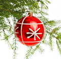 Red decoration ball on pine branch Stock Photos