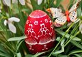 Red decorative easter egg in lawn Royalty Free Stock Photo
