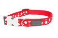 Red dog collar with small area for copy Stock Photos
