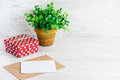 Red dotted gift box, empty card, kraft envelope and a green flower in a rustic ceramic pot. White wooden background, copy space. Royalty Free Stock Photo