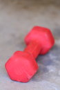 Red dumbbell close up view of a dumb bell laying on a concrete slab Royalty Free Stock Image