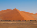 Red dune of namid desert namibia Royalty Free Stock Image