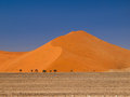 Red dune of namid desert namibia Stock Photos