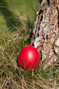 Red easter egg hidden grass Royalty Free Stock Images