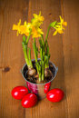 Red easter eggs and yellow daffodils in tin pail on rustic board Royalty Free Stock Photography