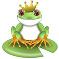 Red-Eyed Green Tree Frog Prince with Crown Stock Photography