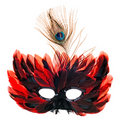 Red feathers mask Royalty Free Stock Images