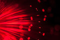 Red fiber optic. Royalty Free Stock Photo