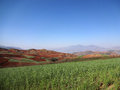 Red field in yunnan located dongchuan china Royalty Free Stock Images
