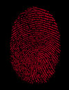 Red Fingerprint Identity Crime Royalty Free Stock Images