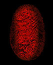 Red Fingerprint Identity Crime Royalty Free Stock Photo