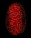 Red Fingerprint Identity Biometrics Security Royalty Free Stock Photo