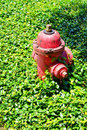 Red Fire hydrant with in grass Royalty Free Stock Photo