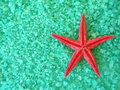 Red fish star and salt Royalty Free Stock Photo