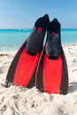 Red flippers at the Caribbean Sea Royalty Free Stock Photos