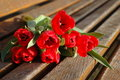 Red flower for lover Royalty Free Stock Images