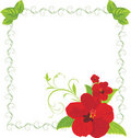 Red flowers in the decorative frame Royalty Free Stock Images