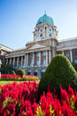 Red flowers in front of buda castle budapest hungary Royalty Free Stock Photos