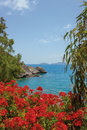 Red flowers of geraniums crete island balcony with in greece Stock Photography
