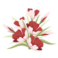 Red flowers illustration of crocus and green leaves isolated on white Stock Image