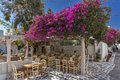Red flowers and typical restaurant, island of Mykonos, Greece Royalty Free Stock Photo