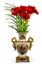 Red flowers in a vase on a white background Royalty Free Stock Photo