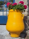 Red Flowers In Yellow Urn