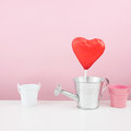 The red foiled chocolate heart stick with small watering can Royalty Free Stock Photo