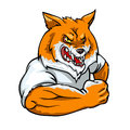 Red Fox mascot, team label design Royalty Free Stock Photo