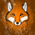 Red fox vector illustration Stock Photos