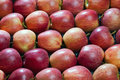 Red, fresh apples Royalty Free Stock Images