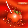 Red fresh tomato with tubule. Royalty Free Stock Photo