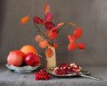 Red fruits, berries, pomegranate divided into parts and autumn leaves in a vase Royalty Free Stock Photo