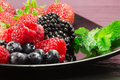 Red fruits selection Stock Images