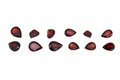 Red garnet isolated on white background Stock Photography