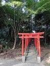 Red Gates Shrine Japan  Shintoism Royalty Free Stock Photo