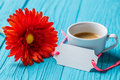 Red gerbera, cup , blank card Royalty Free Stock Photo